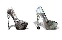 shoe stainless