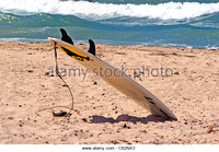 surf-boad-stuck-in-the-sand-c62nx3